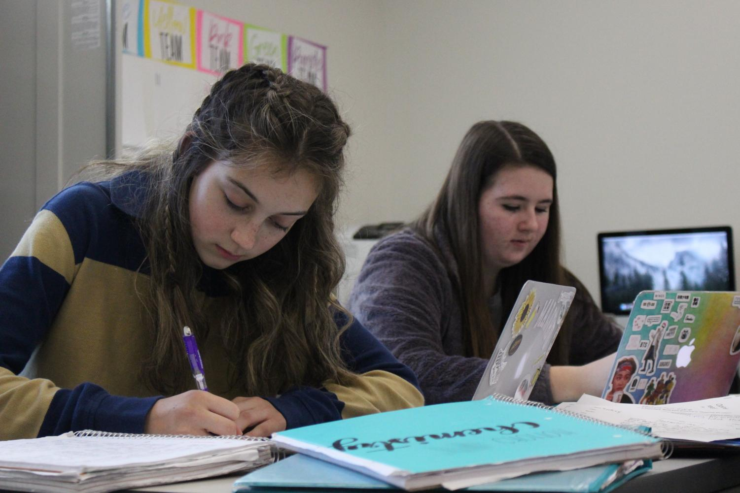 Students Sydney Brown and Paige Snider work on homework.