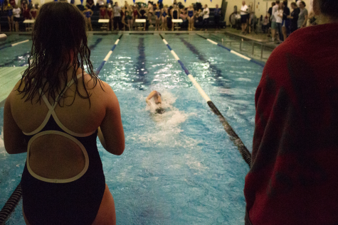 Swimming, Diving, and Splashing Away Competition