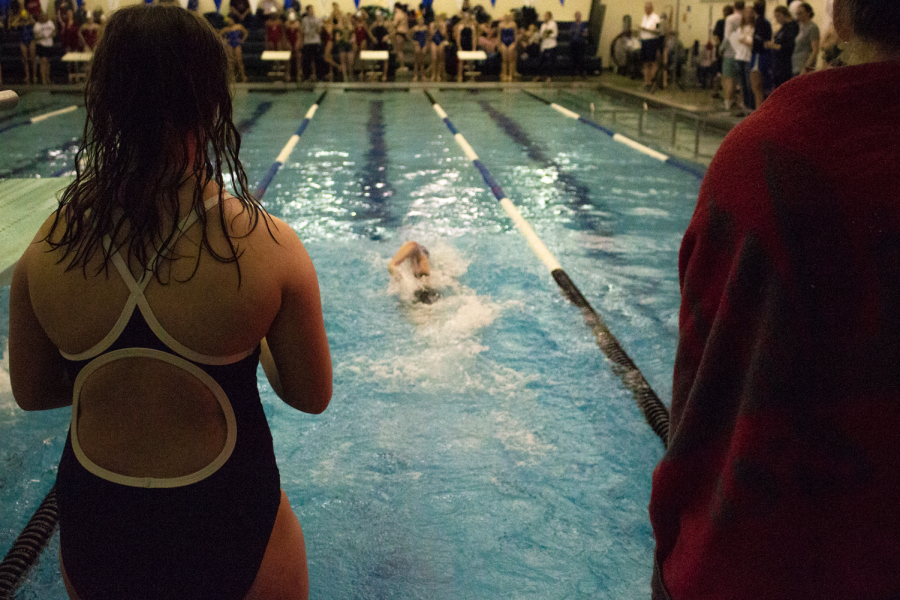 Elizabeth Ash cheers on Wests' swimmer as they hit the wall and make the last stretch back to the finish line.