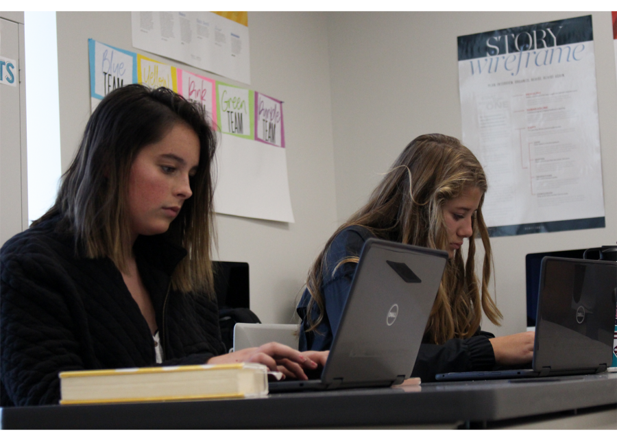 Lily Thrasher (left) and Rori Hornung (right) use their PCs for an in class project