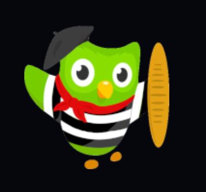 #8 Get The Duolingo App