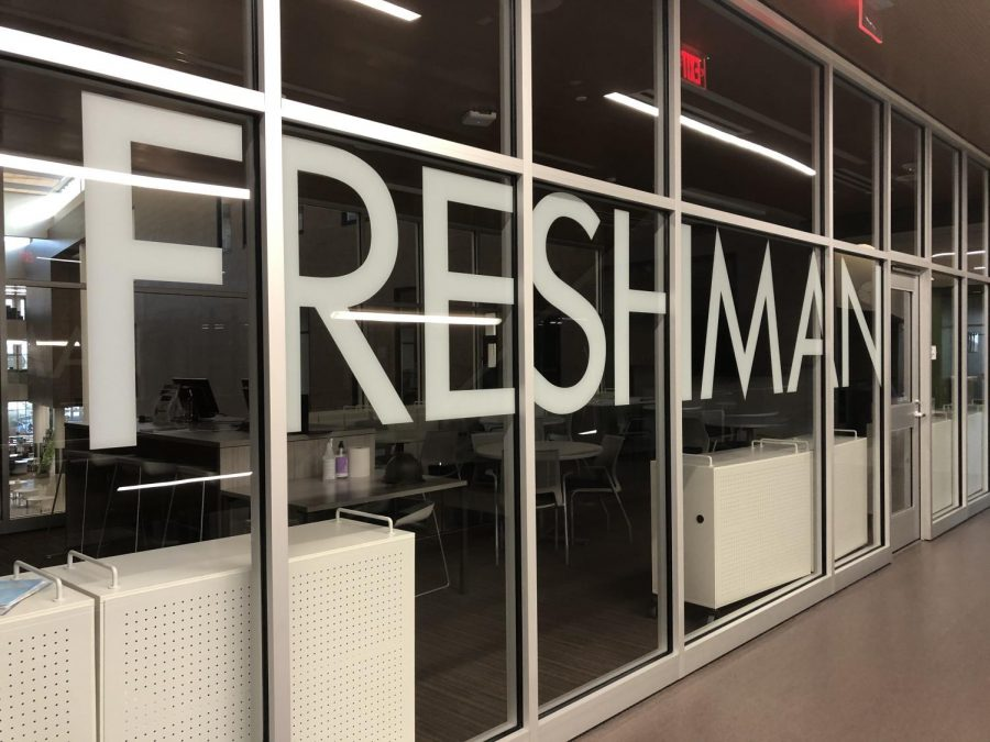 Freshman Reflect on Starting High School Online