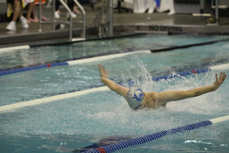 Senior Troy Pierce starts his first lap swimming butterfly.