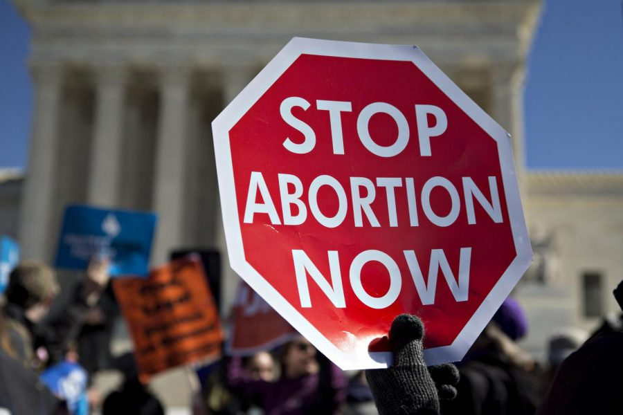 Protestors+spek+against+abortion+at+the+Capitol.
