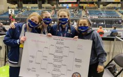 Girls Wrestling Dominates At State Tournament