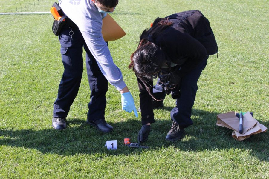 Senior Leslie Tellez picks up evidence found by police canine Java on the soccer field.